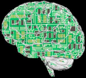 circuit_brain