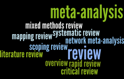 Understanding review types: literature reviews